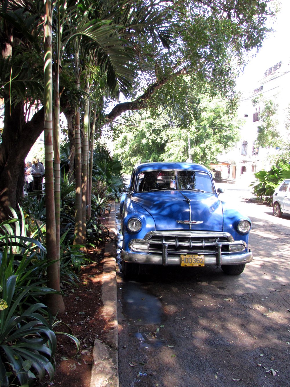 The average car in Havana