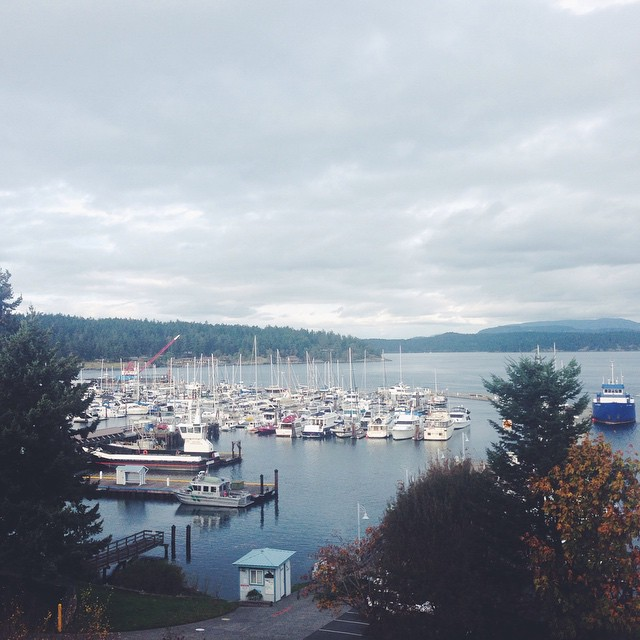 a room with a view of Friday Harbor