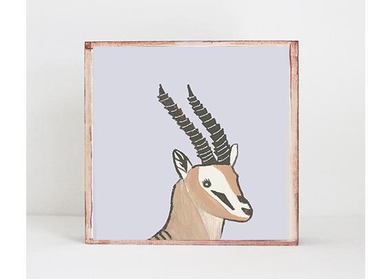 Gazelle Face