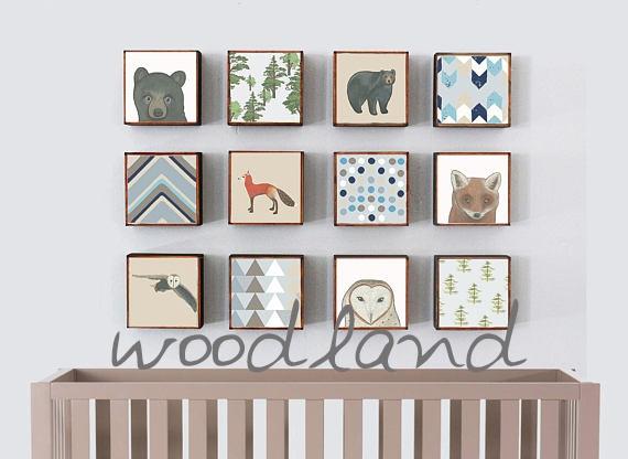 woodland image.jpg