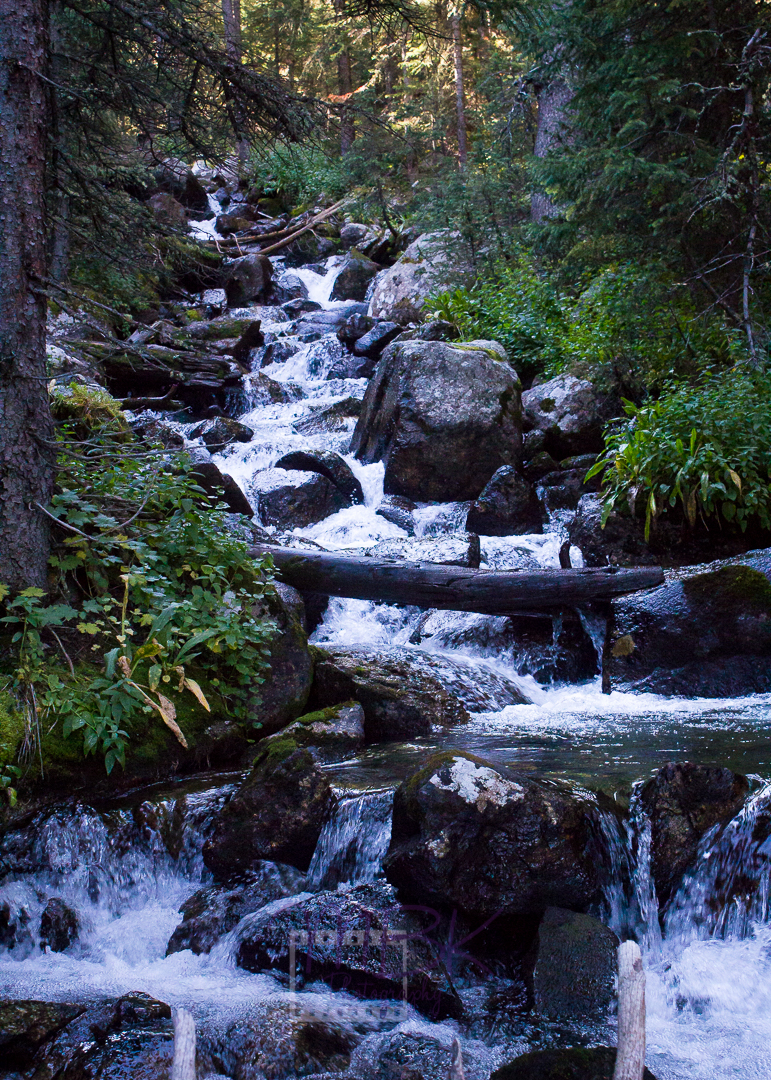 A stunning creek that flows down through La Plata Gulch.