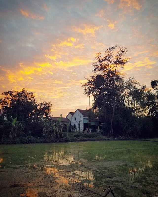 Winter sunset over the neighborhood rice fields