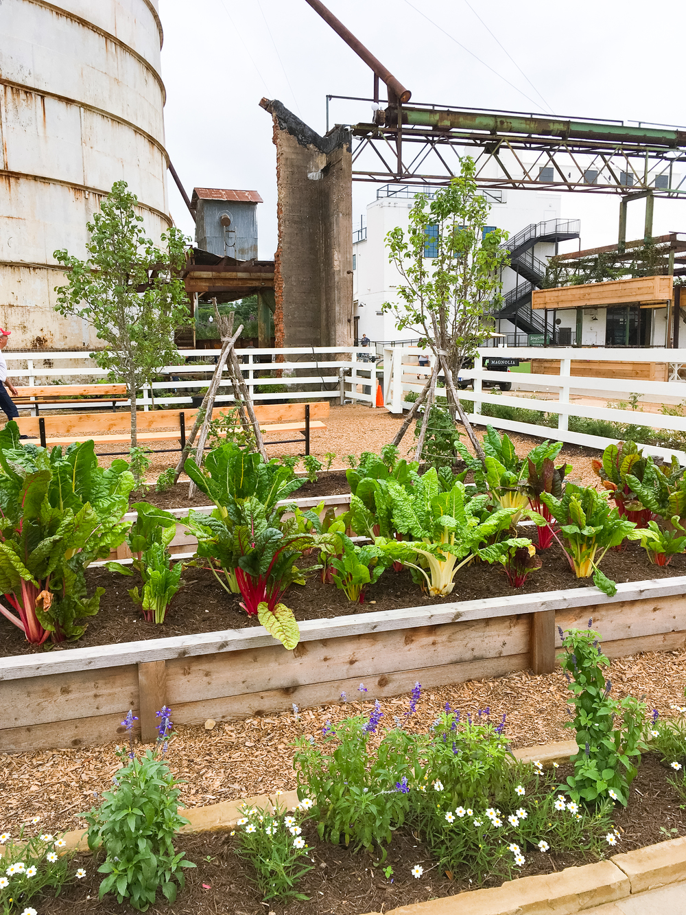 Magnolia Market Garden - Fixer Upper on HGTV - Brightly & Co