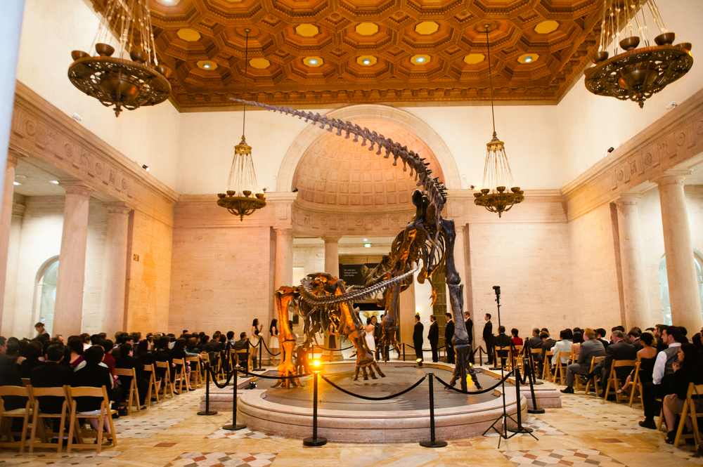 Natural History Museum Los Angeles Events