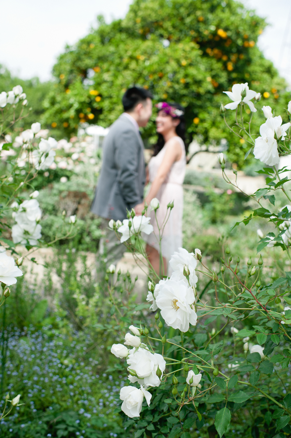 agnes and chun - carissa woo photography-95.jpg