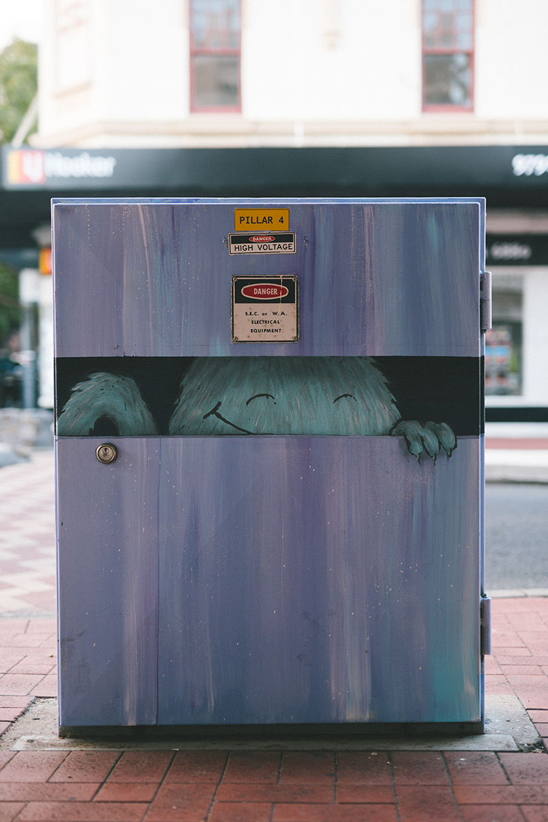 'Inside the Box' (Rose Hotel)  |  Artist : Ian Mutch  |  Inspired by Xavier Kefford from South Bunbury Primary School.