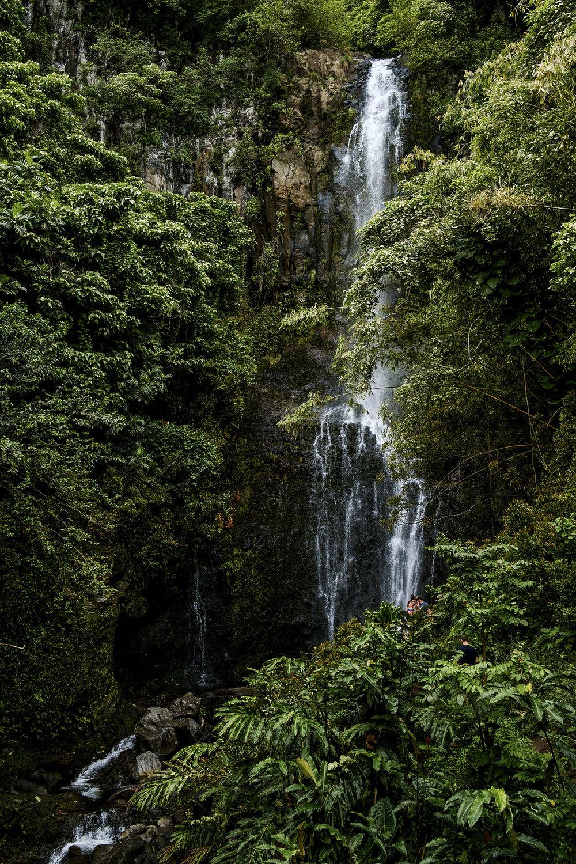 Hawaii_2018-204.jpg