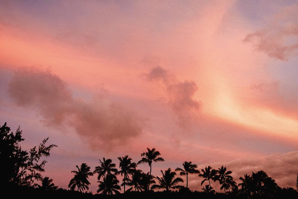 Hawaii_2018-521.jpg