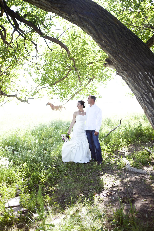 Wedding_1019.jpg
