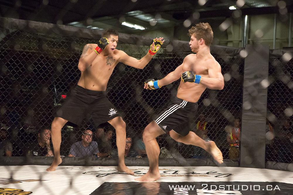 YQL MMA Fights