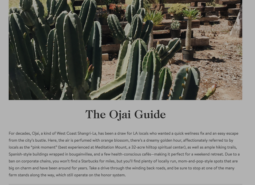 The Ojai Guide – Shopping - Goop.png