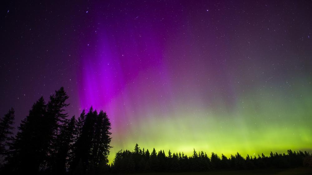 Aurora Borealis | Bonners Ferry, ID