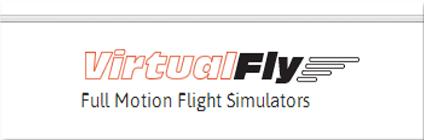 VirtualFly.jpg
