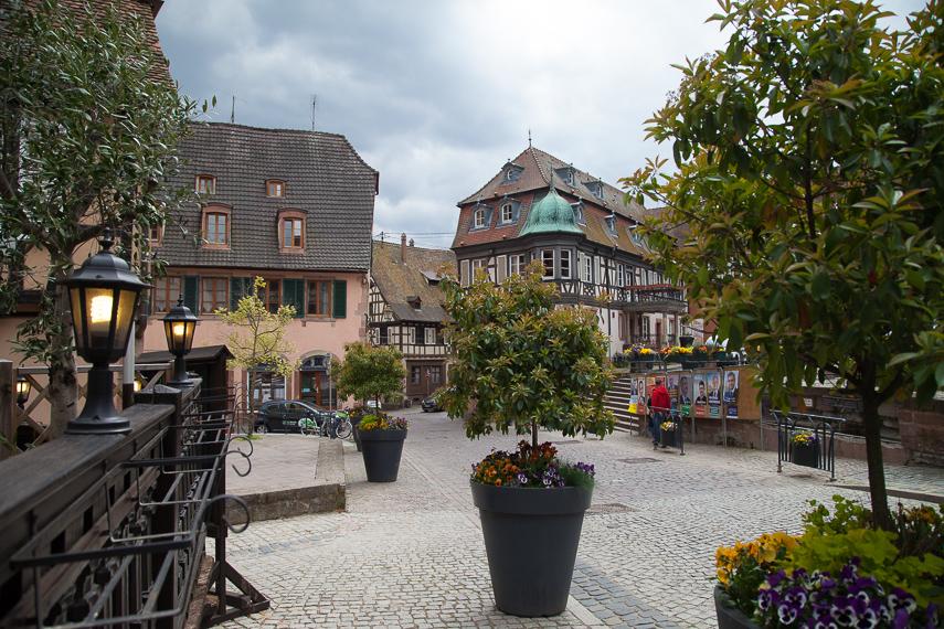 Barr. Alsacen alueen viinipääkaupunkiin lähikylien suurissa puisissa viiniprässeissä puristetut rypälemehut kuljetettiin jatkokäsittelyä ja varastointia varten.