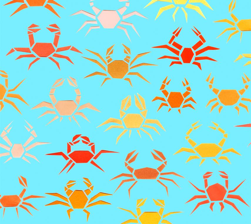 Crabby crab crabs!