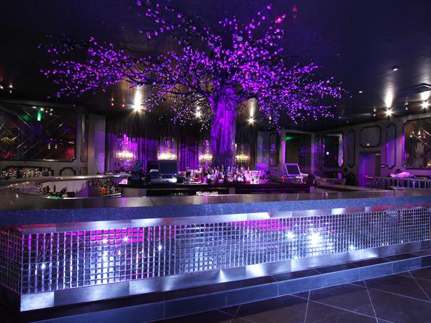 gallery for club bar designs