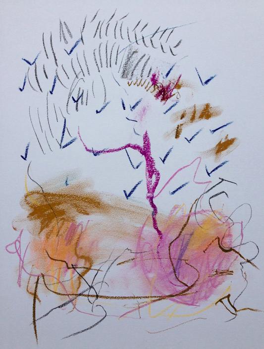 tree bound     14 x 17paper