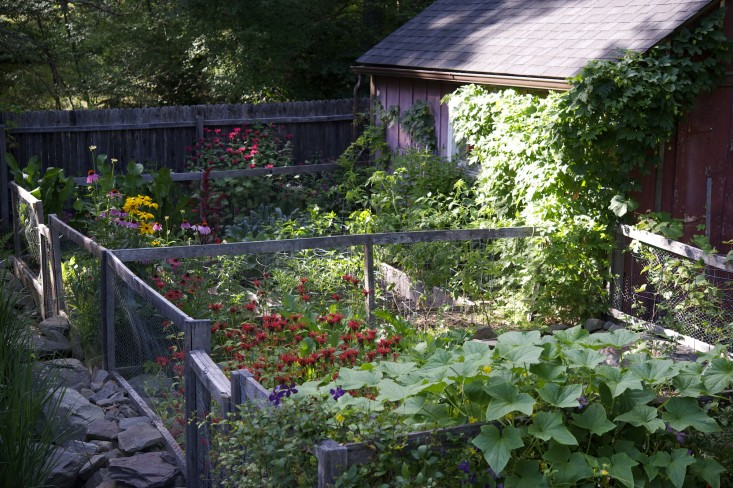 laura-silverman-raised beds_back-gardenista.jpg
