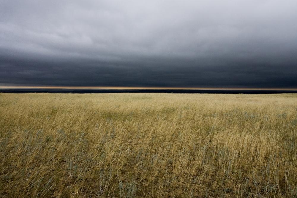 Amp grasslands for Chambre de commerce de mont tremblant