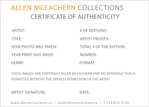 Certificate of authenticity art northurthwall certificate of authenticity art yelopaper Image collections