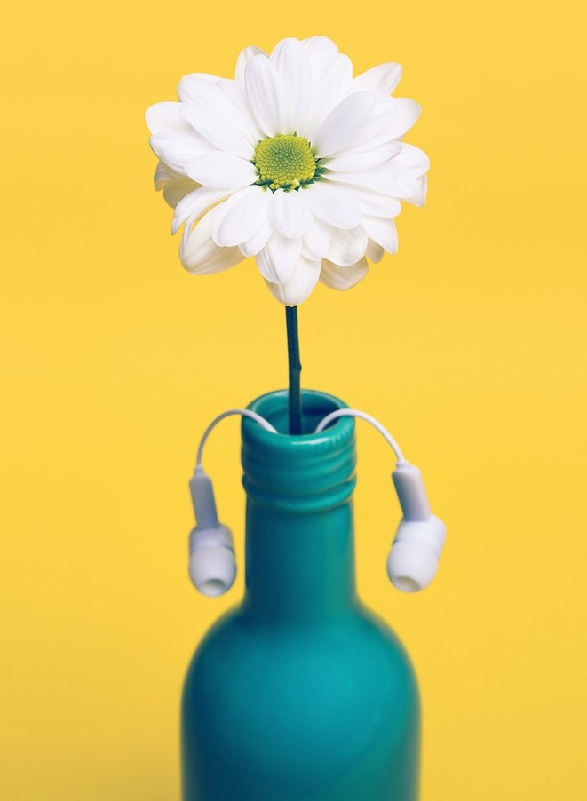 Image of a blue vase containing a daisy and a set of earbuds