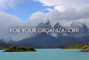 Unleash Potential for your Organization