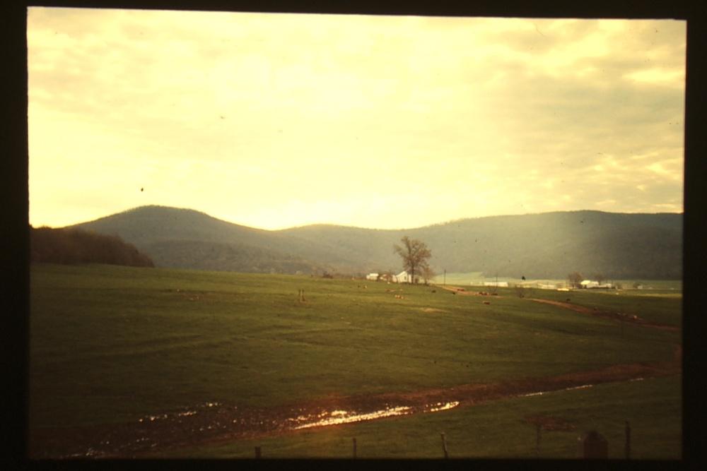 gkg jones valley.jpeg