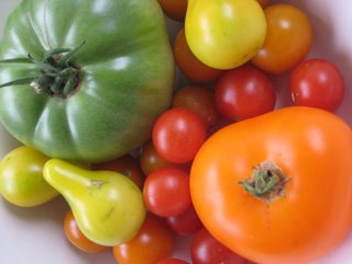 EBVB_Tomatoes__web.jpg