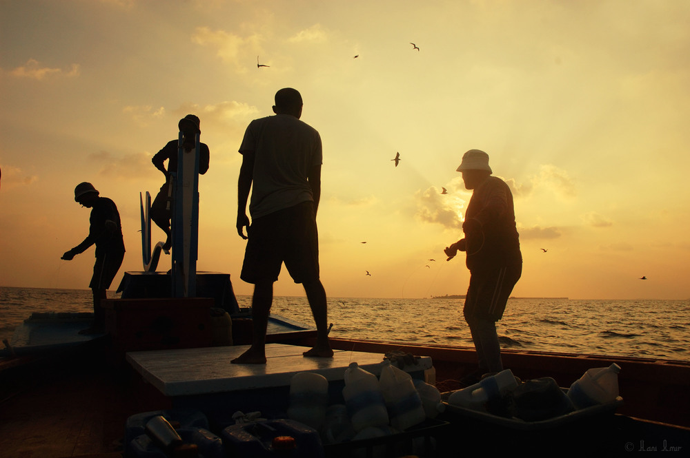 The sun sets as the fishermen make their last attempts at a catch. On that particular day they were after a shoal of yellow-fin tuna, a delicious and high valued fish, that they had the luck of finding.