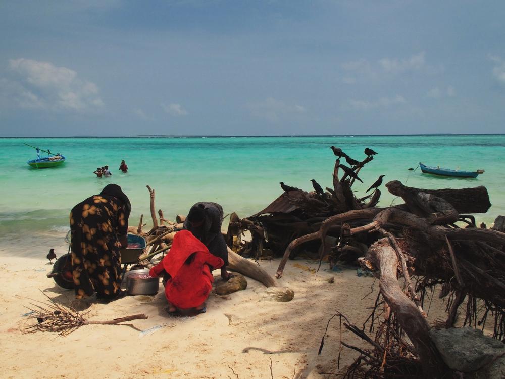 H.Dh Hanimaadhoo, Maldives. (2009)