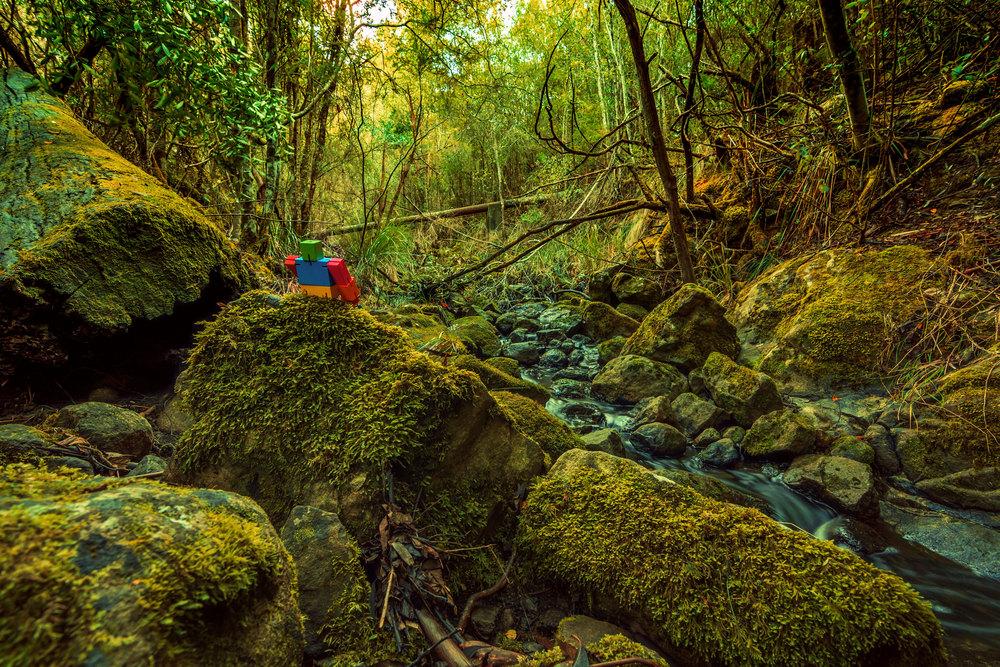 Bicentennial Park. Hobart, Tasmania, Australia. Nikon D7100. (2016)