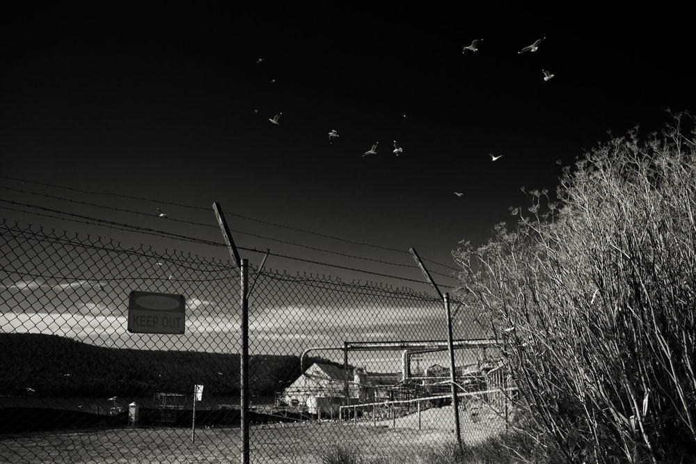 2012-08-24 - Hobart - Zinc works - D3100  - DSC_0037 (3).jpg