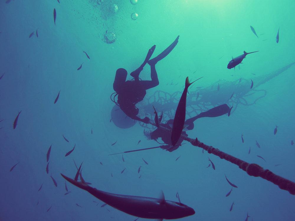 Open Ocean, Maldives. Canon G10. (2009)