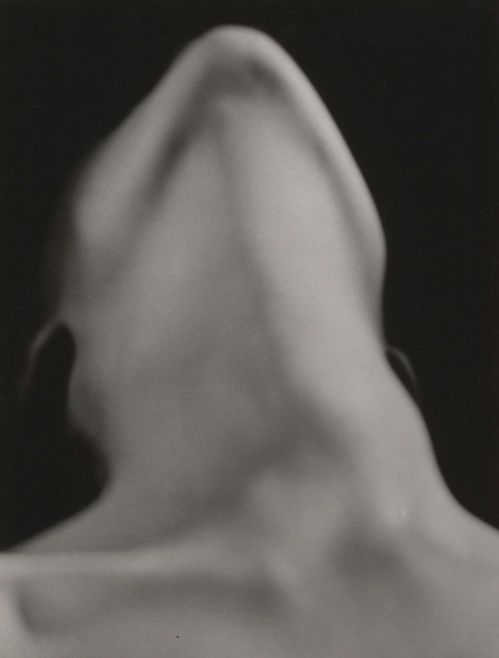 Fig. 5.  Anatomies  (1929)