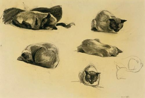 Edward Hopper,  Cat Study  , 1941, conté crayon on paper