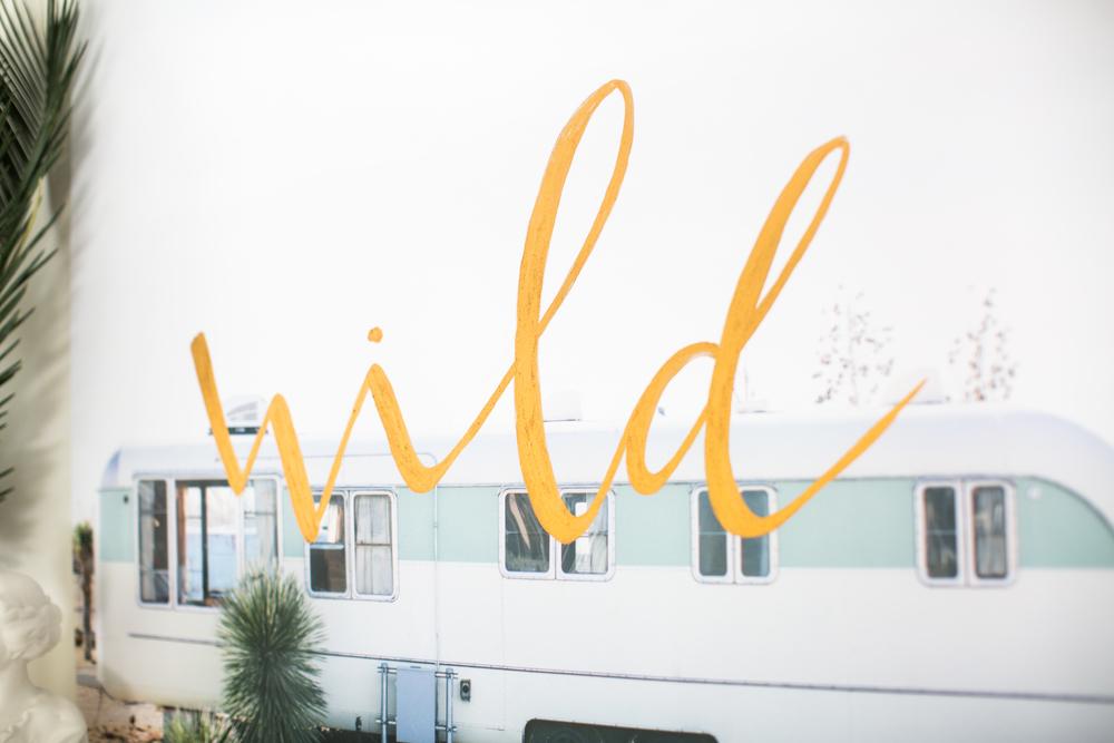 WILD-2.jpg
