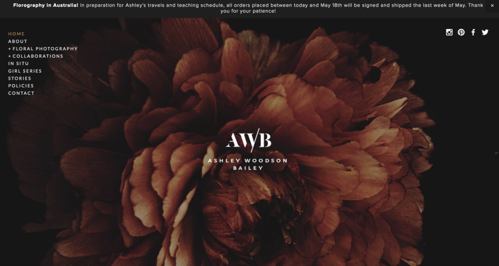 Ashley Woodson Bailey // Website Design