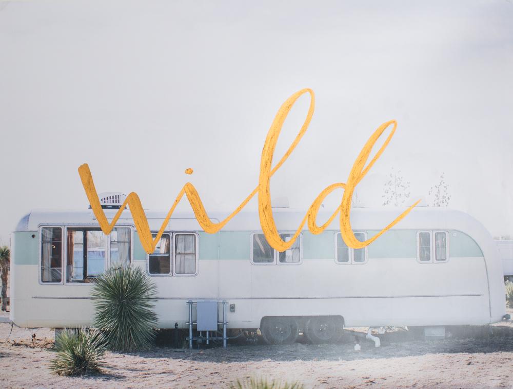 WILD-3.jpg