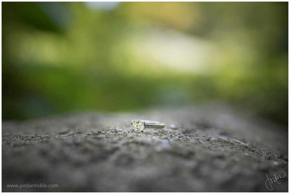 greensboro_nc_engagement_photo_fisher_park_JTP-7.jpg