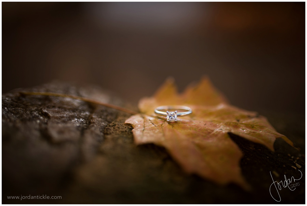 winston_salem_engagement_photography_with_kids_jordan_tickle_photography-9.jpg