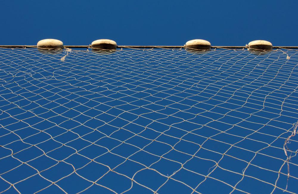 Net Closeup 002.jpg