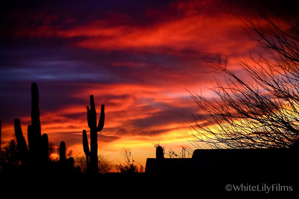 #63 -- Good Evening Sun