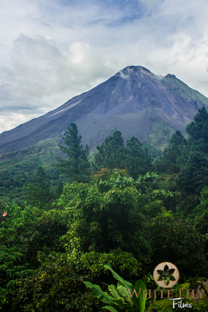 #102 - Active Arenal