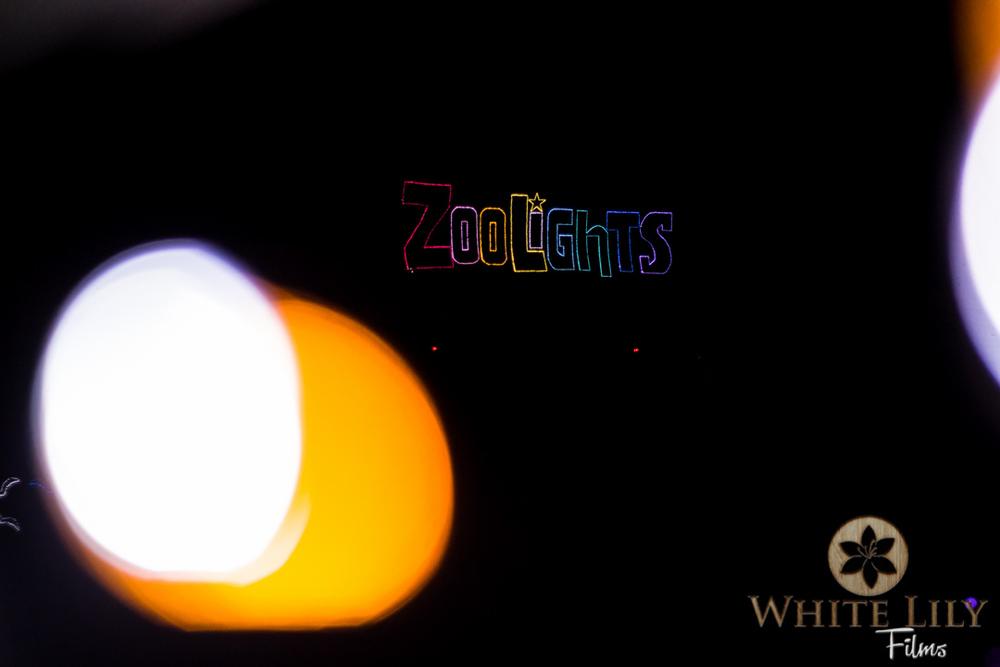 #108 - Yah! ZooLights!