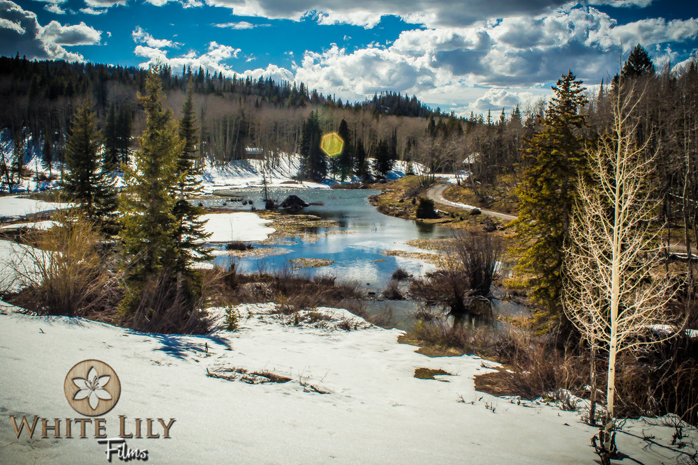 #136 - Spring On The Grand Mesa
