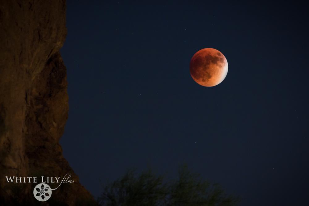 #143 - Super Blood Moon