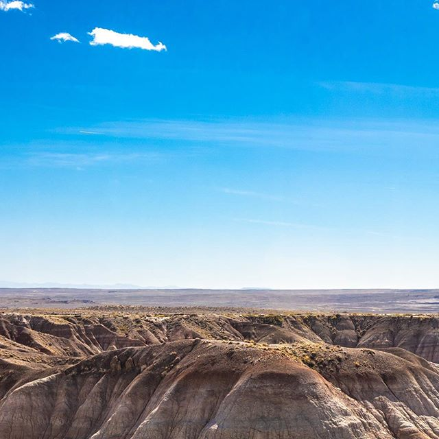 #BlueMesa #PetrifiedForest #NationalPark • . #Grid #InstaGrid #Instagram #Love #NationalGeographic #Nature #Photography #PhotoOfTheDay #Canon #5D #Film #WhiteLilyFilms #Adventure #Travel #InstaPanorama #6Grid #TheViewFromHere #Route66 #AZ #OptOutside #Outdoor #Scenic #Beauty #Fun #HaveCameraWillTravel #HireMe #PaintedDesert