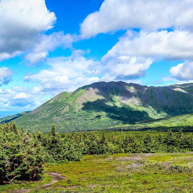 #FlatTop #Mountain #Alaska  1 of 3 • . #InstaGrid #InstaPano #Grid #3Grid #Panoramic #Adventure #Scenic #Beauty #Nature #Fun #Travel #Beauty #WhiteLily #Films #Filmmaker #Canon #Nature #Landscape #WhiteLilyFilms #Photographer #Cinematographer #Phoenix #HaveCameraWillTravel #Video #Love