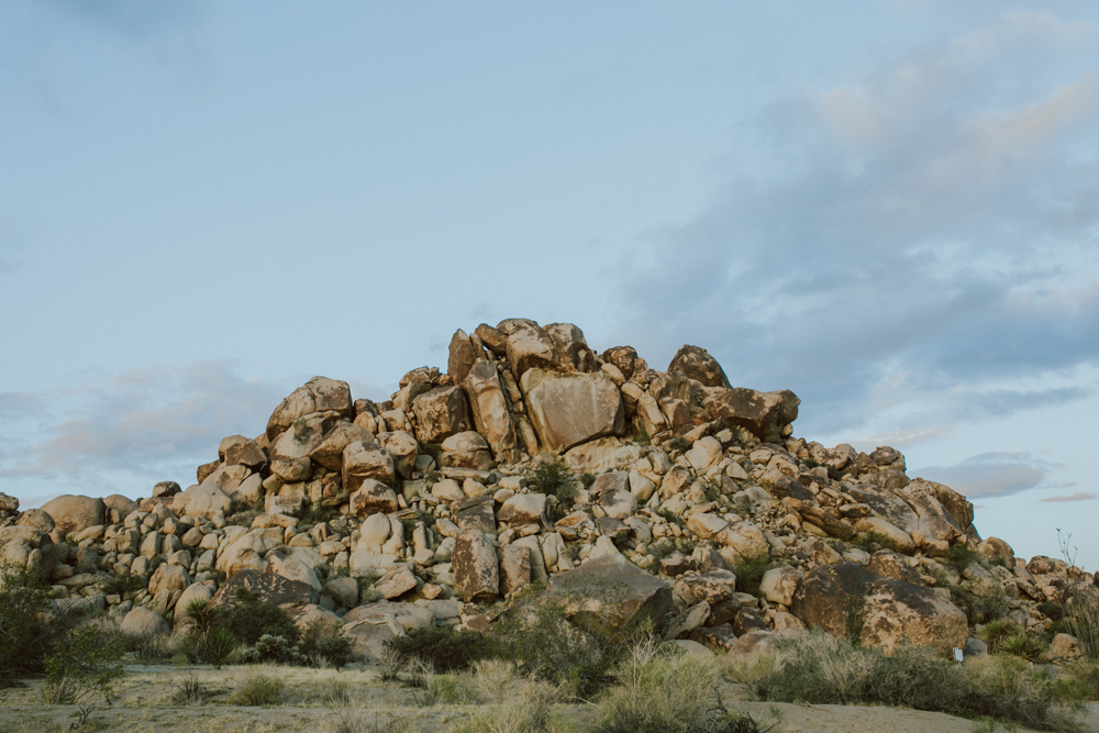 joshua-tree-ambergress-0002.JPG