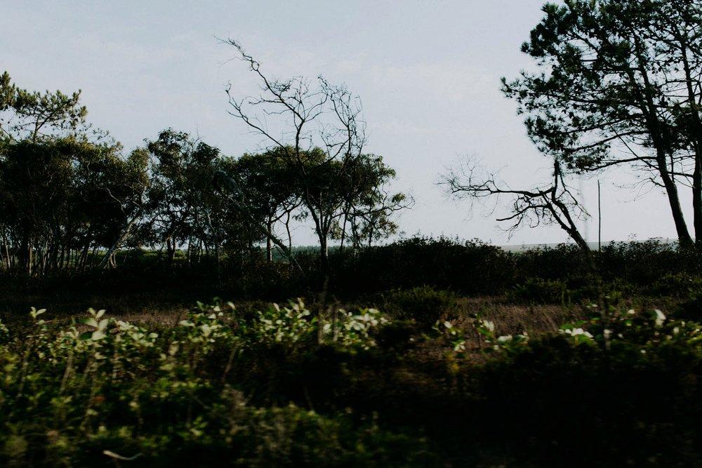portugal-lagos-amber-gress_0076.jpg